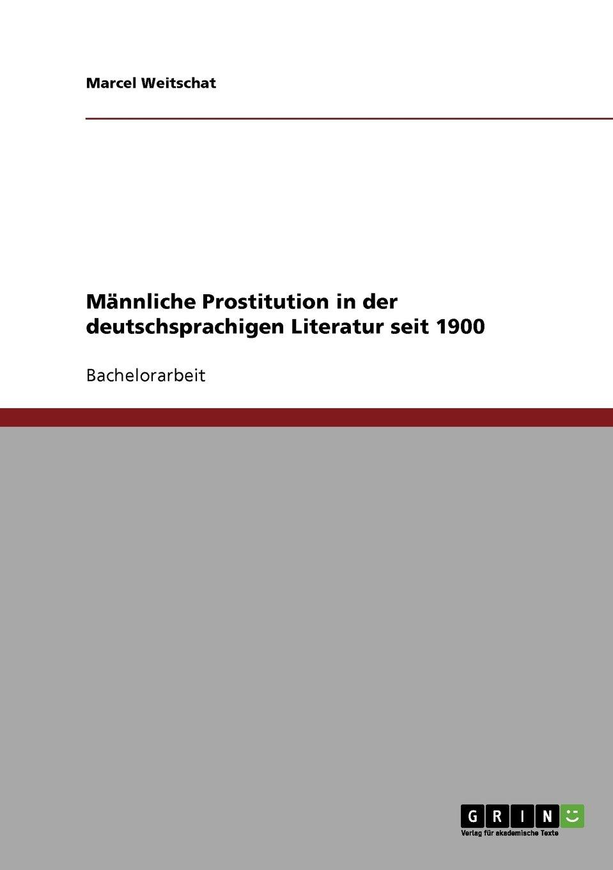 Männliche Prostitution in der deutschsprachigen Literatur seit 1900