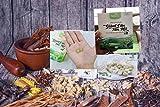 07 boxes (105 pack - Use 105 days) Viên Thảo Mộc giảm cân Nấm - Mushroom Secure Weight Loss Tea With 100% Herbs - VietNam - Nấm Giàm cân - Herbal Vietnam