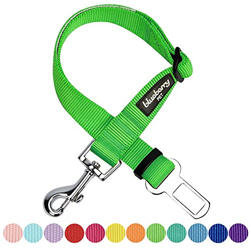 Blueberry Pet 12 Colors Classic Dog Seat Belt Tether for Dogs Cats, Neon Green, Durable Safety Car Vehicle Seatbelts Leads Use with Harness (Lupine Solid Green)