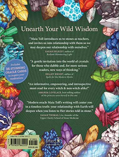 Illustrated Crystallary, The (Wild Wisdom): Guidance and Rituals from 36 Magical Gems & Minerals