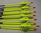Easton ST Axis N Fused 340 Carbon Arrows w/Blazer Vanes Wraps 1 Dz.