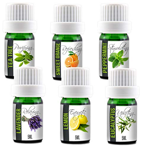 Aroma2Go Essential Oils Set, 100% Pure Undiluted, Therapeutic Grade, Plant Based | 5ML Peppermint, Lavender, Sweet Orange, Lemon, Tea Tree & Eucalyptus (Six Pack Essentials)