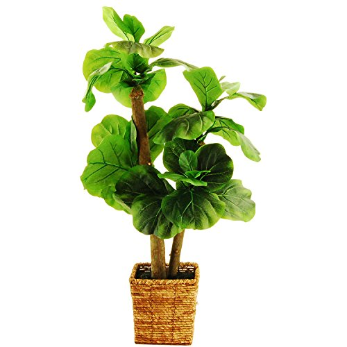 LCG Florals 38'' Fiddle-Leaf Fig Tree in a Square Basket with Faux Dirt, Mini by LCG Florals
