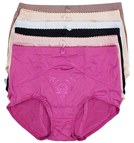 Barbra's 6 Pack Floral Hidden Pocket High Waist Plus Size Brief Panties (3XL)
