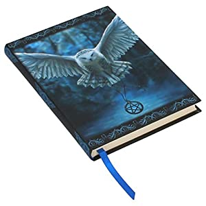 Awaken Your Magic Embossed Designer Journal Anne Stokes