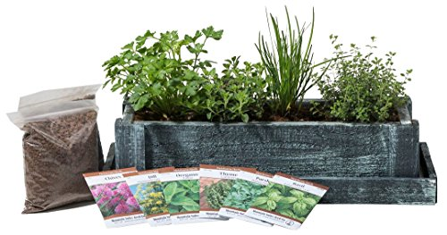 Cedar Wood Planter Box - Complete Mini Herb Garden Kit