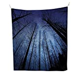 Night Skyocean tapestryForest Dry Tree Branches Starry Sky Stars Dawn Winter Landscape Image 54W x 72L inch Large tapestryNavy Blue and Black