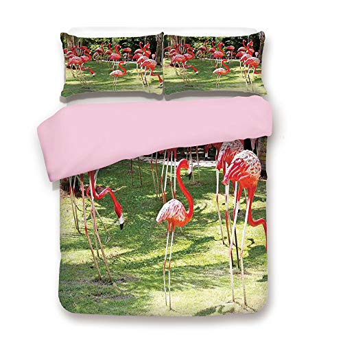 Pink Duvet Cover Set,Twin Size,Flamingo Bird Model in The Garden in Vibrant Colors Under Sunlight Shadows,Decorative 3 Piece Bedding Set with 2 Pillow Sham,Best Gift for Girls Women,Pink and Green