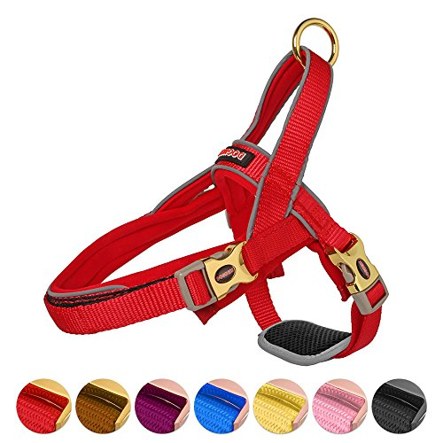 DOGNESS Classic Dog Halter Harness, Traffic Control Handle Belly Protector Metal Buckle, Reflective Soft Padded Nylon, for Small Medium Large Dogs, Matching Leash Collar Sold Separately, Red XS/S Classic Nylon Halters