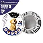 Dewel-Collare-Antipulci-CaneGatto-Antiparassitario-per-cani-Ajustable-per-Tutti-i-Tipi-di-Cani-Impermeabile-8-Mesi-di-Efficacia-Protezione