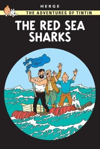 red sea sharks - 2