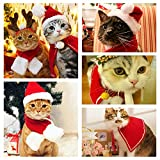 Legendog Cat Costume Pet Turkey Hat Thanksgiving Apparel Cats Small Dogs (Christmas Cloak and Christmas hat)