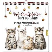 Adventskalender »Auf Samtpfoten durch den Advent«: 24 neue Katzengeschichten