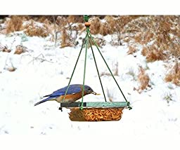 Looker Hanging Mealworm Dish