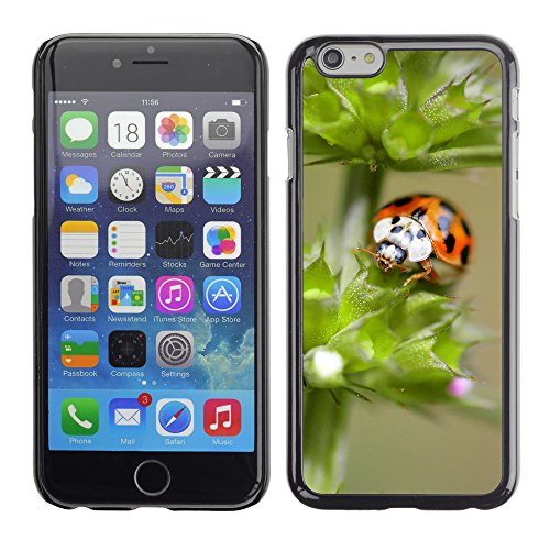 "Premio Sottile Slim Cassa Custodia Case Cover Shell // V00003674 orange, ladybug 2 // Apple iPhone 6 6S 6G PLUS 5.5"""
