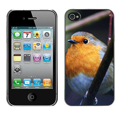 Premio Sottile Slim Cassa Custodia Case Cover Shell // F00015159 oiseau // Apple iPhone 4 4S 4G