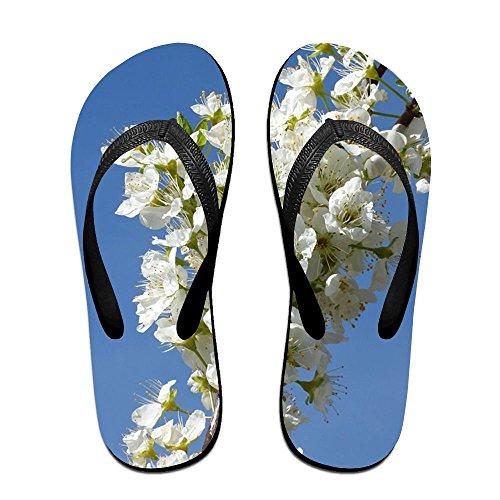 Branch Flower Plum (Jinqiaoguoji Personalized Summer Ornate Branch Plum Flowers Florir Spring Womens Sandals Beach Sandals Pool Party Slippers Flip Flops)
