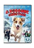 A Doggone Christmas
