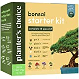 diy garden ideas Bonsai Starter Kit - The Complete Growing Kit to Easily Grow 4 Bonsai Trees from Seed + Comprehensive Guide & Bamboo Plant Markers - Unusual Gardening Gifts Ideas for Women - Indoor Bonzai Tree Seeds