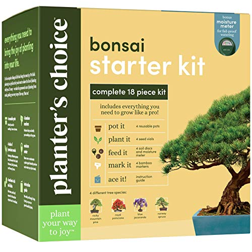 Bonsai Starter Kit  The Complete Growing Kit to Easily Grow 4 Bonsai Trees from Seed  Comprehensive Guide amp Bamboo Plant Markers  Unusual Gardening Gifts Ideas for Women  Indoor Bonzai Tree Seeds