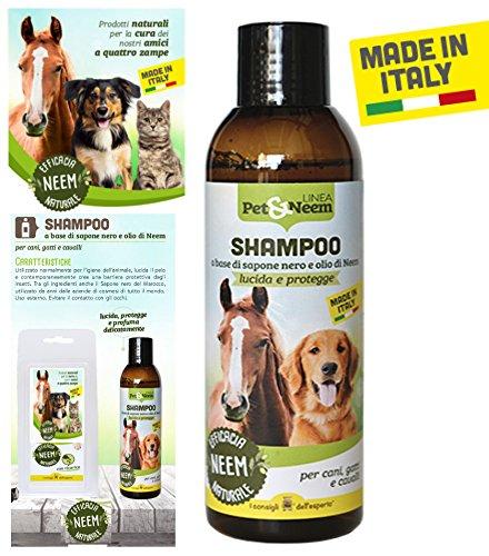 i consigli dell esperto Champú Repelente Margosa Caballos Perros Gatos Antiparasitario Mosquitos Insectos Bio: Amazon.es: Productos para mascotas