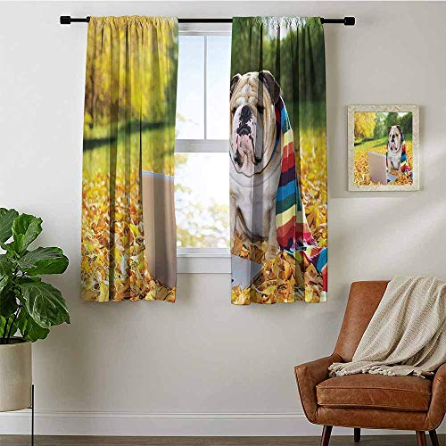 GugeABC English Bulldog Light Blocking Curtains,Dog in The Park with a Laptop and Rainbow Colored Scarf Funny Photography, for Room Darkening 2Panels for Living Room W52 x L63 Multicolor