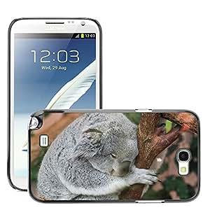 Super Stella Slim PC Hard Case Cover Skin Armor Shell Protection // M00107257 Koala Fauna Animals Sleep Nap // Samsung Galaxy Note 2 II N7100