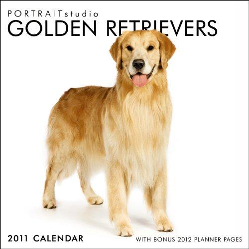 Portrait Studio - Golden Retrievers 2011 Square (Multilingual Edition)