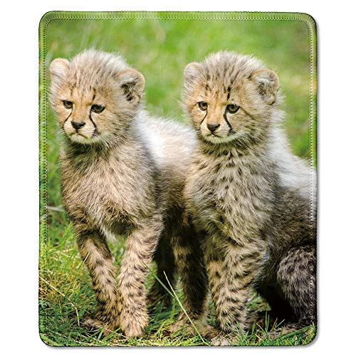 Adorable Mouse - dealzEpic - Art Mousepad - Natural Rubber Mouse Pad Printed with Wild Animals Two Adorable Cheetah Cubs - Stitched Edges - 9.5x7.9 inches