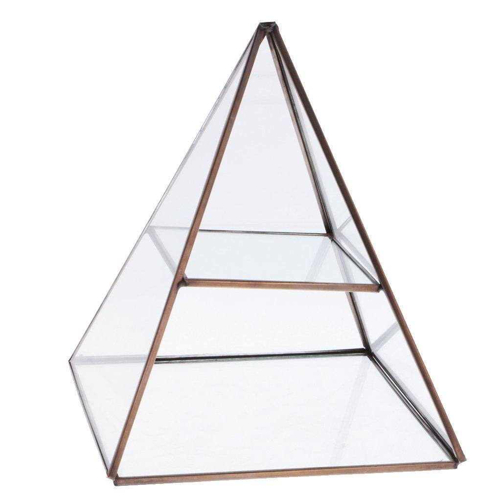 MagiDeal Glaspyramide Schmuckkasten Ohrring Halskette Anzeige Schmuckschatulle