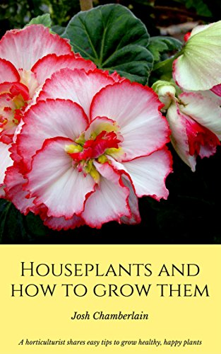 houseplants-and-how-to-grow-them-a-horticulturist-shares-easy-tips-to-grow-healthy-happy-plants