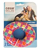 Cesar Millan Crunch Ring Large Dog Chew Toy Medium Activity