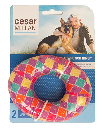 Cesar Millan Crunch Ring