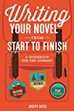 img - for The Nighttime Novelist: Finish Your Novel in Your Spare Time book / textbook / text book