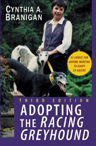 Greyhound Dog - Adopting the Racing Greyhound