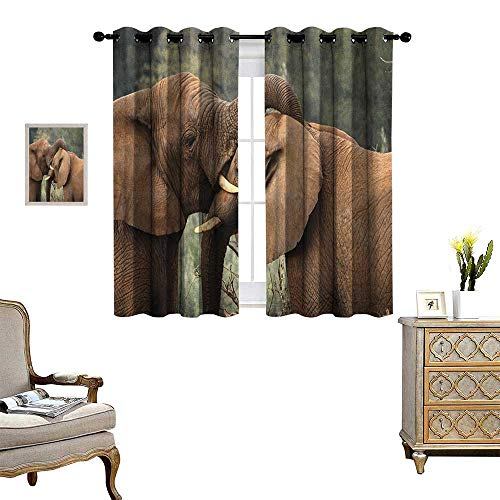 Warm Family Safari Patterned Drape for Glass Door Two Wild Savannah Elephants Wrestling Cute Nature Icons South African Animals Photo Waterproof Window Curtain W55 x L63 Brown Green ()