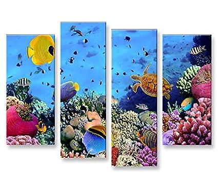 De Imágenes sobre lienzo Acuario Peces Mar Agua Doktor peces tropicales 4 XXL Póster Lienzo Cuadro