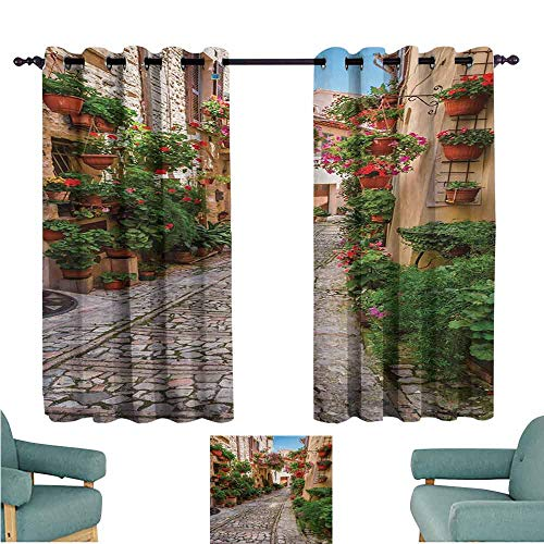 DONEECKL Decor Curtains Tuscan Historical Mediterranean Street Flowers Italian Town in Sunny Day Umbria Blackout Draperies for Bedroom Window W63 xL63 Ivory Green and Red ()