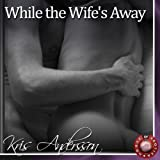 Bargain Audio Book - While the Wife s Away