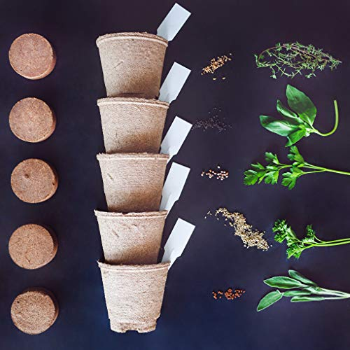 Nature's Blossom Herb Garden Kit - 5 Herbs To Grow From Organic Seeds. Gardening Starter Set With Everything a Gardener Needs To Easily Grow 5 Plants - Thyme, Basil, Cilantro, Parsley and Sage