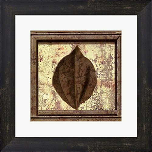 (Classic Leaf Square III by Pierre Fortin Framed Art Print Wall Picture, Espresso Brown Frame, 13 x 13 inches)