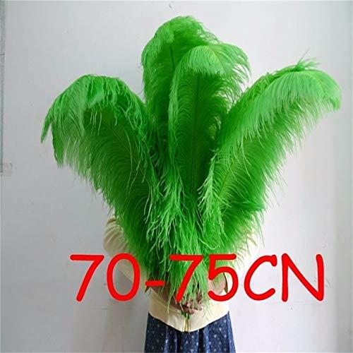 Plumas de avestruz de Maslin, 20 unidades por lote, de 70 a 75 cm, para decoración de mesa de boda, bailarinas y niñas,...