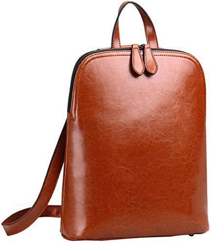 Heshe Women's Leather Backpack Casual Daypack for Ladies (Brown-r) (Collection Computer Zippered Flap)