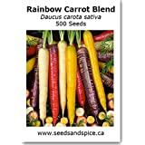 Rainbow Carrot Blend 500 Seeds Red, Purple, Orange, Yellow and White Carrots