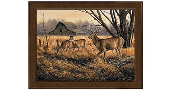Abandoned Farmstead Whitetail Deer Wrapped Canvas by Rosemary Millette