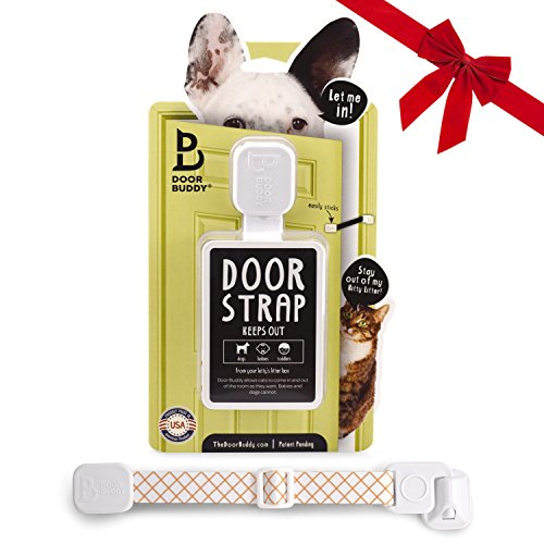 Doggie Litter Box - 9