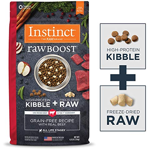 Instinct Raw Boost Grain Free Recipe with Real Beef Natural Dry Dog Food by Nature's Variety, 4 lb. Bag (Best Dry Dog Food Made In Usa)