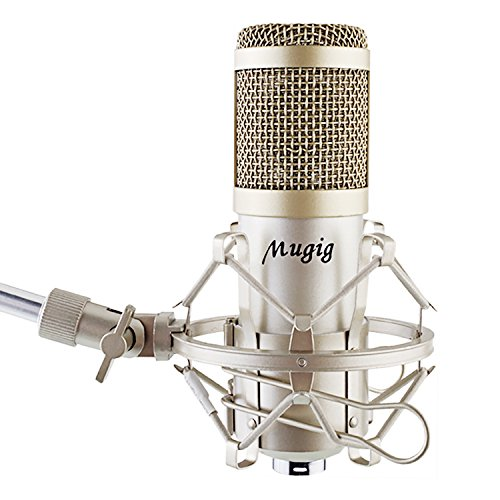 Microphone for professional studio recording