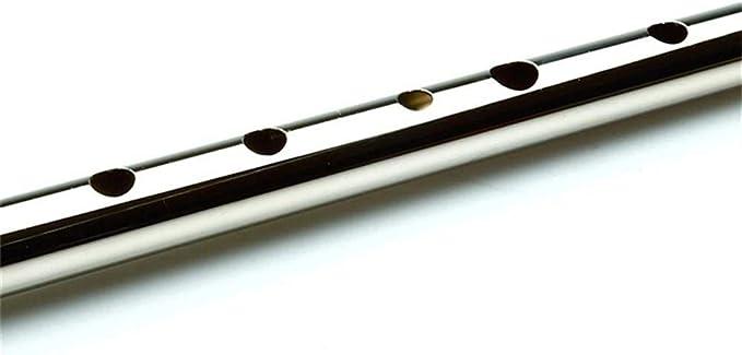 Flauta de Irlanda Silbato de estaño Instrumentos musicales de Irlanda Flauta de silbato irlandés Instrumento de viento de madera Fácil de aprender (Color : D Key Silver): Amazon.es: Instrumentos musicales