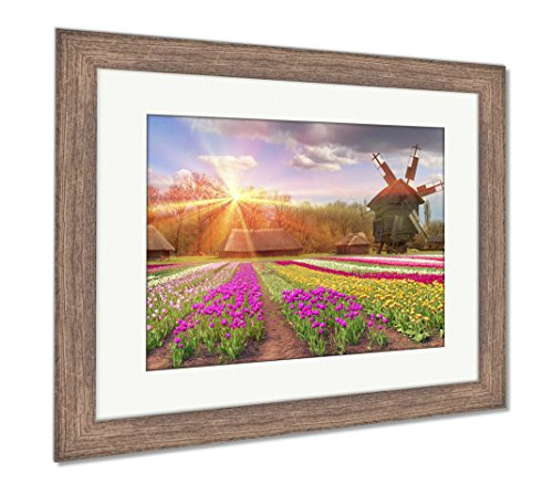 Fields of Tulips in Village, Wall Art Home Decoration, Color, 30x35 (Frame Size), Rustic Barn Wood Frame, AG5997697 ()